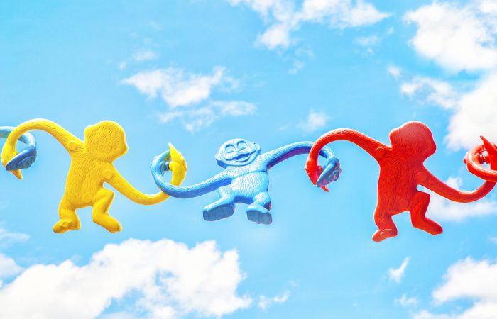 toy monkeys holding hands - networking image
