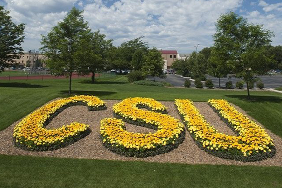 CSU image of flowers forming the letters CSU